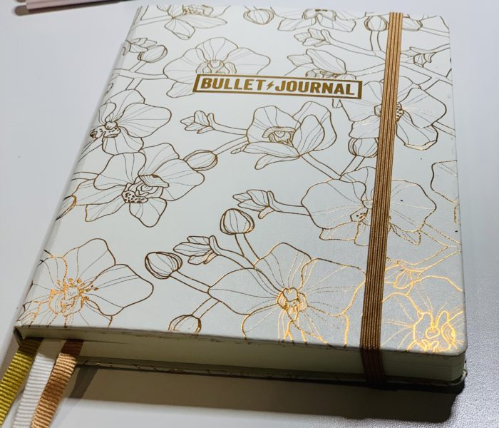 Setting up my 5th Bullet journal